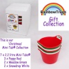 Rainbow Trug Mini-Tub® CHRISTMAS Collection